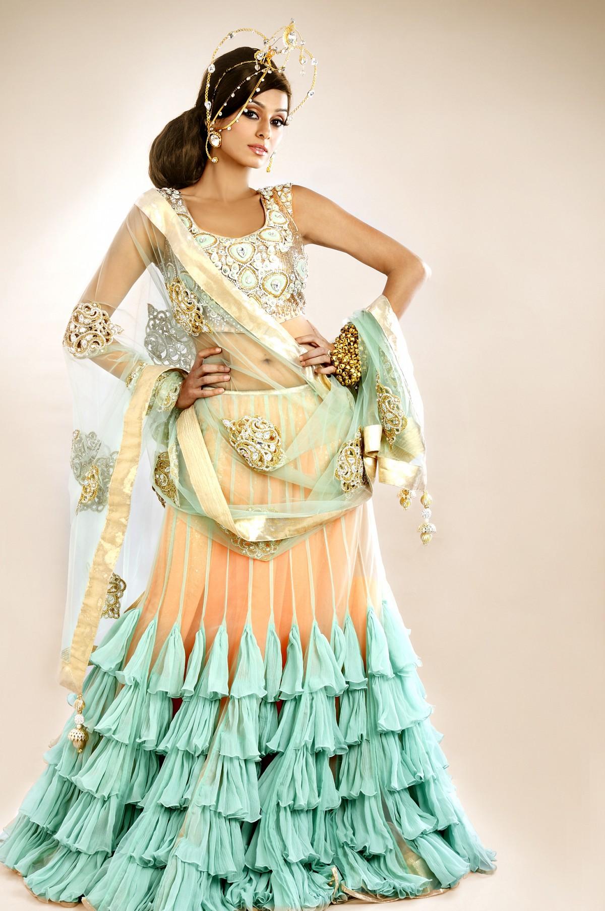 Lehenga choli saree designs blouse designs 2014 style for Dijain photo
